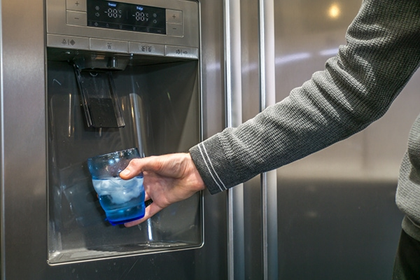 refrigerator ice smells bad
